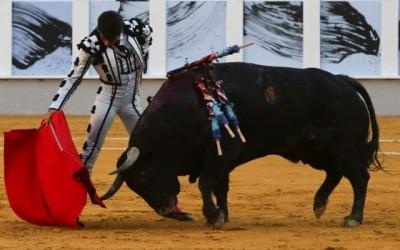 Salvador Vega y Torosanda, fin del apoderamiento